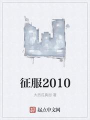 征服2010